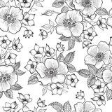 Floral seamless pattern. Abstract flower sketch background. Flor Royalty Free Stock Image