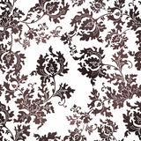 Floral seamless pattern. Against white Stock Images