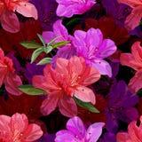 Floral seamless pattern with azalea vector illustration stock photos