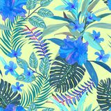 Floral seamless pattern. Background with isolated blue hand draw. N tropical flowers and leaves. Design for invitation, prints and cards. Vector illustration Royalty Free Stock Images