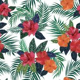 Floral seamless pattern. Background with isolated colorful hand. Drawn tropical flowers and leaves on black background. Design for invitation, prints and cards Royalty Free Stock Photography