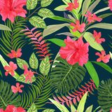 Floral seamless pattern. Background with isolated colorful hand. Drawn tropical flowers and leaves. Design for invitation, prints and cards. Vector illustration Stock Photos