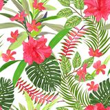 Floral seamless pattern. Background with isolated colorful hand. Drawn tropical flowers and leaves. Design for invitation, prints and cards. Vector illustration Stock Image
