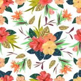 Floral seamless pattern. Background with isolated colorful hand. Drawn tropical flowers and leaves on white background. Design for invitation, prints and cards Royalty Free Stock Photos