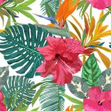 Floral seamless pattern. Background with isolated colorful hand. Drawn tropical flowers and leaves. Design for invitation, prints and cards. Vector illustration Royalty Free Stock Photo
