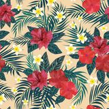 Floral seamless pattern. Background with isolated colorful hand. Drawn tropical flowers and leaves. Design for invitation, prints and cards. Vector illustration Royalty Free Stock Photography