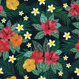 Floral seamless pattern. Background with isolated colorful hand. Drawn tropical flowers and leaves on black background. Design for invitation, prints and cards Stock Photo