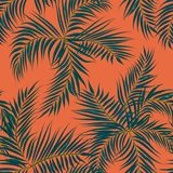Floral seamless pattern. Background with isolated hand drawn tro. Pical palm leaves. Design for invitation, prints and cards. Vector illustration Royalty Free Stock Photography