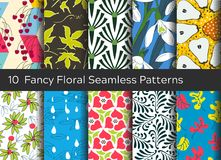 Floral seamless pattern background set. Ornaments with stylized. Leaves, flowers and fruits Stock Photography