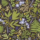Floral seamless pattern with beautiful blue and yellow blooming flowers and leaves on black background. Natural backdrop. With flowering plants. Vector Stock Image