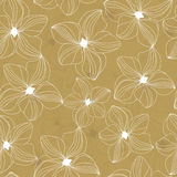 Floral seamless pattern with beautiful flowers, hand-drawing. Vector illustration. Stock Photography