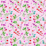 Floral seamless pattern of a berry. Royalty Free Stock Images