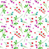 Floral seamless pattern of a berry. Stock Image