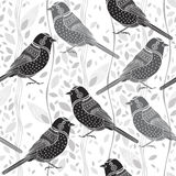 Floral seamless pattern with birds. Cartoon  background. M Stock Photos