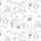 Floral seamless pattern, black and white. Contour, pattern. stock illustration