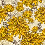 Floral seamless pattern with blooming flowers Stock Photos
