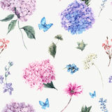 Floral seamless pattern with Blooming Hydrangea  Stock Image