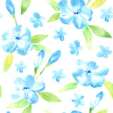 Floral seamless pattern with blue flowers and leaves. Watercolor hand drawn illustration.White background Stock Image