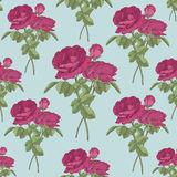 Floral seamless pattern with bouquets of red roses Royalty Free Stock Photo
