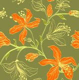 Floral  seamless pattern. With bright orange lilies on a green background Stock Images