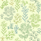 Floral seamless pattern. Royalty Free Stock Photos
