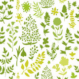 Floral seamless pattern. Royalty Free Stock Images