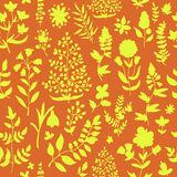 Floral seamless pattern. Stock Photo