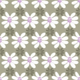 Floral seamless pattern on a colored background Royalty Free Stock Photos