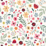 Floral seamless pattern with colorful flowers Royalty Free Stock Images