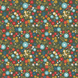 Floral seamless pattern with colorful flowers texture Stock Image
