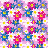 Floral seamless pattern with colorful flowers Royalty Free Stock Image