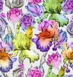 Floral seamless pattern. Colorful Spring Vector Backgrounds Stock Image