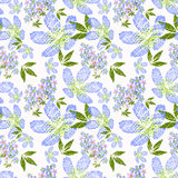 Floral seamless pattern , cute blue, purple,  flowers white background. Royalty Free Stock Photo