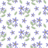 Floral seamless pattern , cute cartoon  flowers white background Royalty Free Stock Photo