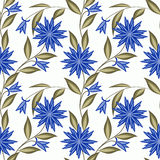 Floral seamless pattern, cute cartoon flowers white background Stock Image