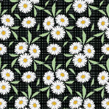 Floral seamless pattern, cute  flowers black background with decorative elements. Stock Photography