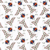 Floral seamless pattern , cute flowers white background Royalty Free Stock Images