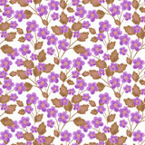 Floral seamless pattern , cute purple  flowers white background. Stock Images