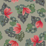 Floral seamless pattern  with cyclamen flowers Royalty Free Stock Photos
