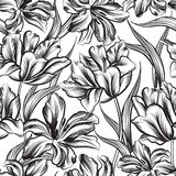 Floral seamless pattern. Decorative flower background. Stock Photography