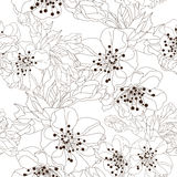 Floral seamless pattern. Elegant seamless pattern with hand drawn decorative cherry blossom flowers, design elements. Floral pattern for wedding invitations Stock Images