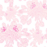 Floral seamless pattern. Elegant seamless pattern with hand drawn decorative cherry blossom flowers, design elements. Floral pattern for wedding invitations Stock Photography