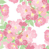 Floral seamless pattern. Elegant seamless pattern with hand drawn decorative cherry blossom flowers, design elements. Floral pattern for wedding invitations Royalty Free Stock Photography