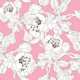 Floral seamless pattern. Elegant seamless pattern with hand drawn decorative cherry blossom flowers, design elements. Floral pattern for wedding invitations Royalty Free Stock Image