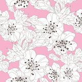 Floral seamless pattern. Elegant seamless pattern with hand drawn decorative cherry blossom flowers, design elements. Floral pattern for wedding invitations Royalty Free Stock Photo