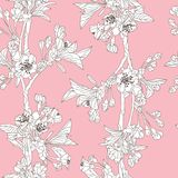 Floral seamless pattern. Elegant seamless pattern with hand drawn decorative cherry blossom flowers, design elements. Floral pattern for wedding invitations Stock Photos