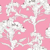 Floral seamless pattern. Elegant seamless pattern with hand drawn decorative cherry blossom flowers, design elements. Floral pattern for wedding invitations Stock Image