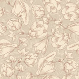 Floral seamless pattern, endless texture with flowers in vintage Stock Images