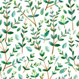 Floral seamless pattern with eucalyptus branches. Floral seamless pattern.Eucalyptus branches.Pattern for fabric, paper and other printing and web projects Royalty Free Stock Photo