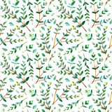 Floral seamless pattern.Eucalyptus branches. Pattern for fabric, paper and other printing and web projects.Watercolor hand drawn illustration Stock Photography